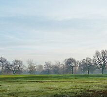 Frosty Park by kirstyf