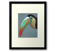 'Tucan' play that game! Framed Print