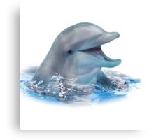 Happy Dolphin Canvas Print