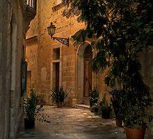 Birgu Street Malta by Edwin  Catania
