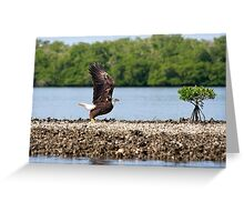 Cleared for take off !! Greeting Card