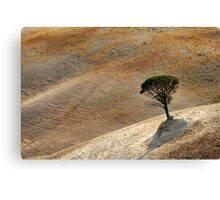 """""""The last Mohican"""" Canvas Print"""