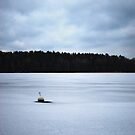 Nyköping Frozen Lake by petegrev