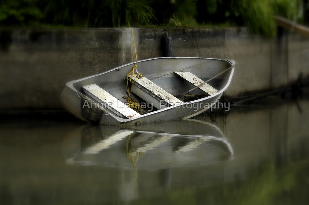 Old Boat by Annie Lemay  Photography