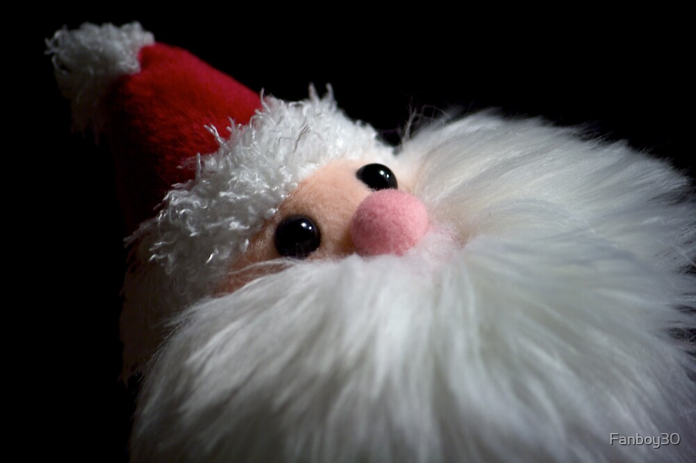 Furry Santa by Fanboy30