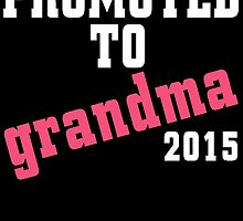 PROMOTED TO GRANDMA 2015 by birthdaytees