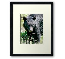 Did Someone Say Cheese  Framed Print