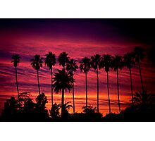 A Frame of Hollywood Sunsets. Photographic Print