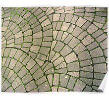 Grassy Footpath Poster