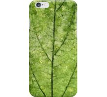Nature Veins iPhone Case/Skin