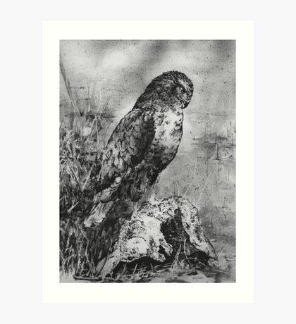 Buzzard with prey Art Print