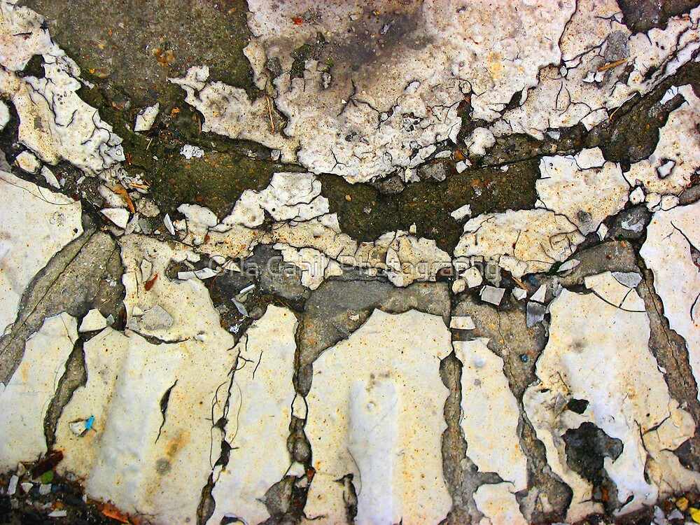 Pavement - Cracked by Orla Cahill Photography