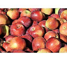 Almost Apple Pie Photographic Print