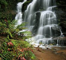 Sylvia Falls (best viewed large) by Son Truong