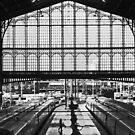 Alone on the platform by Jeanne Horak-Druiff
