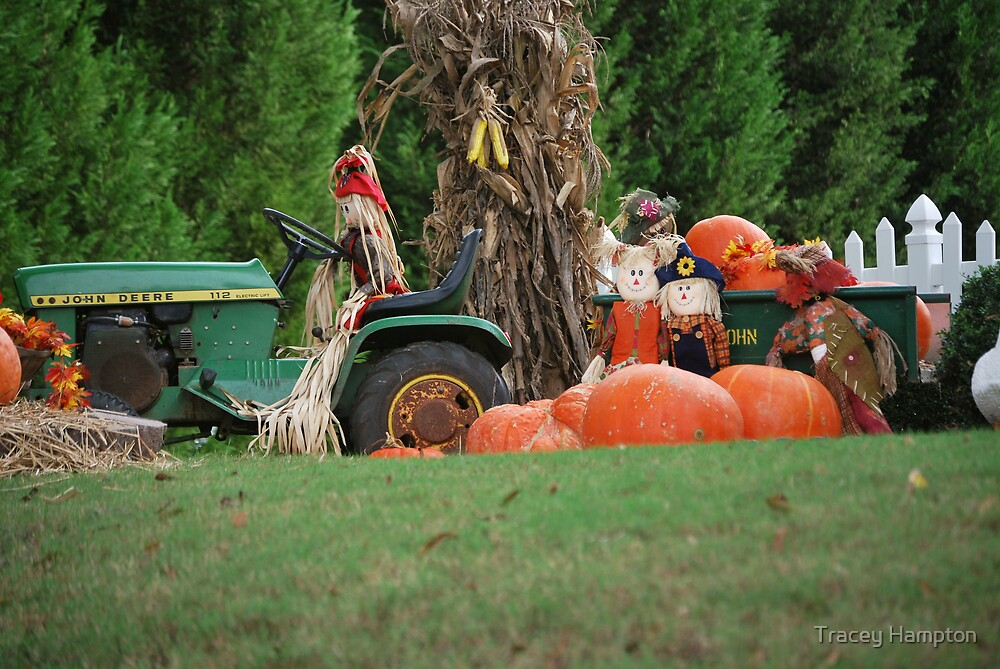 farmers front yard by Tracey Hampton