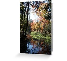 Autumn Pond Greeting Card