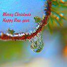 Winter's Teardrop, Christmas Card by MaeBelle