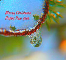 Winter's Teardrop, Christmas Card by MaeBelle