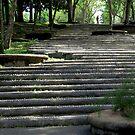 garden steps by lensbaby