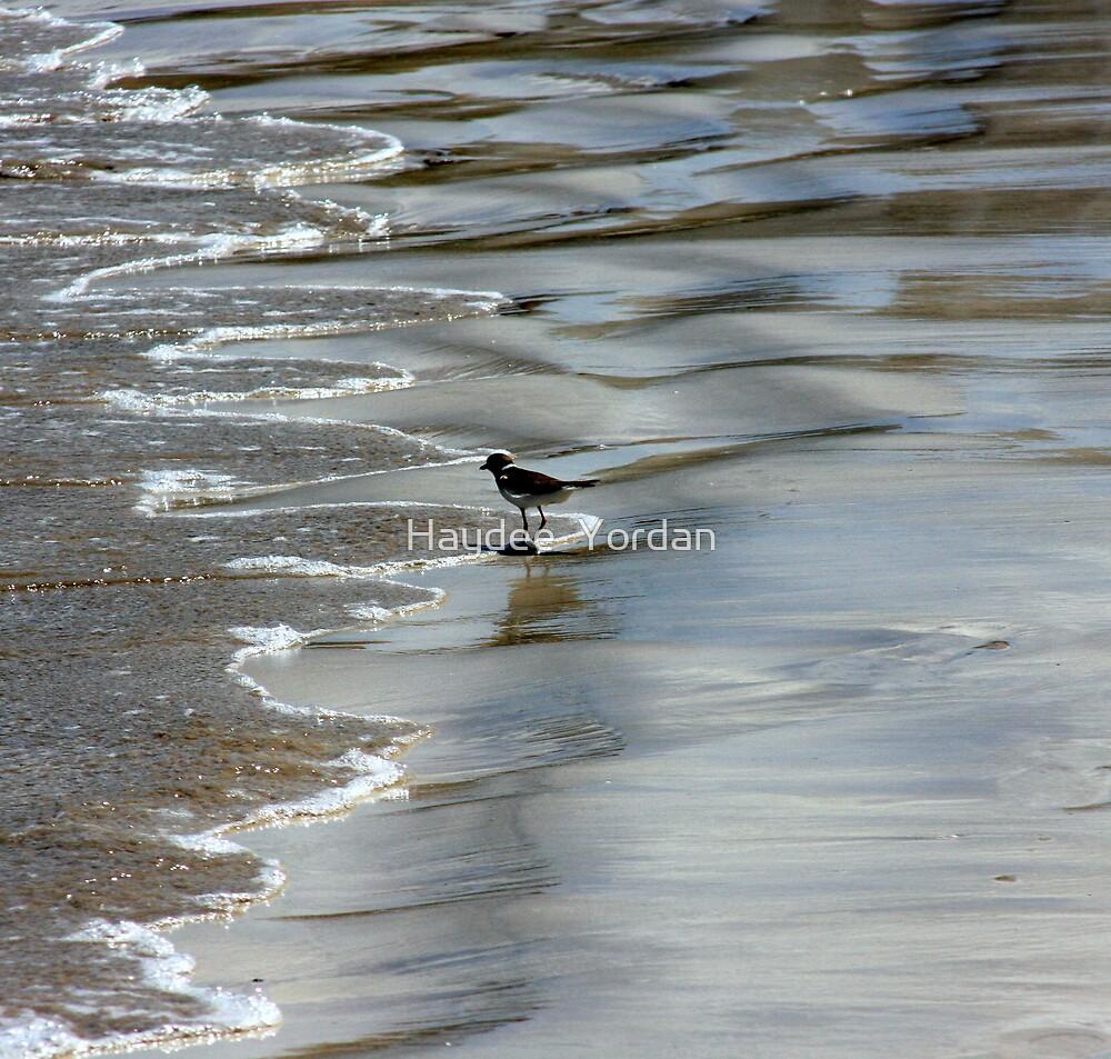 Just a bird... by Haydee  Yordan