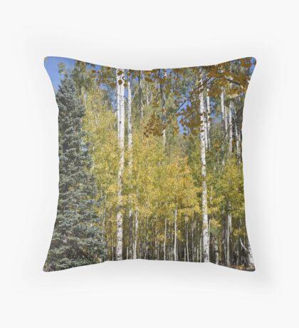 Northern Arizona Aspens Throw Pillow