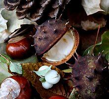 Autumn by Irene Walters