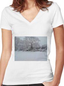Snowy Scene Women's Fitted V-Neck T-Shirt
