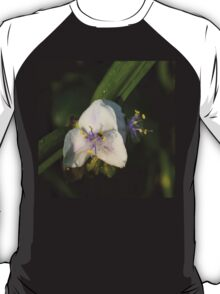 Tiny Little Wasp T-Shirt