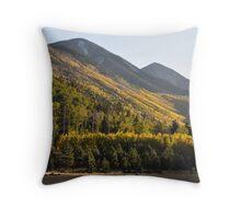 Hillside Wonder Throw Pillow