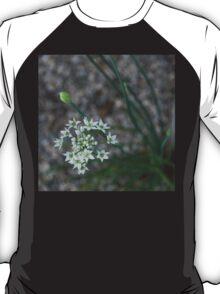 Calming Grays and White Stars T-Shirt