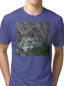 Calming Grays and White Stars Tri-blend T-Shirt