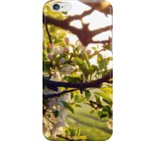 Berries and blossoms iPhone Case/Skin