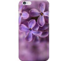 Closeup of fresh lilac iPhone Case/Skin