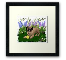 Febuary Puppy .. playing in the garden Framed Print