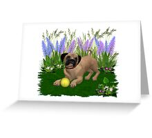 Febuary Puppy .. playing in the garden Greeting Card