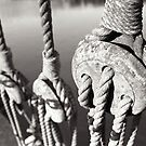 ropes n ting by rorycobbe