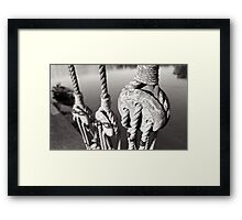 ropes n ting Framed Print