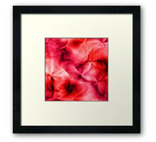 Deep Rose Shadows Framed Print