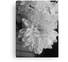 White Bloom (Balck And White) Canvas Print