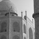 Taj Mahal by Framed-Photos