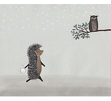 Nursery art - Owl and hedgehog in the fog Photographic Print