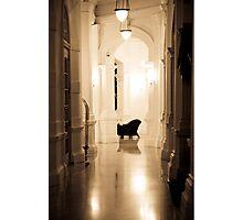 Hall chair Photographic Print
