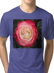 Rose and Rain - Pinks and Creams and Whites Tri-blend T-Shirt