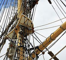 The Rigging by reflector