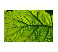 Green Glowing Leaf Art Print