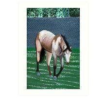 Buckskin Quarter Horse Portrait Art Print