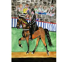 Tennessee Walking Horse Portrait Photographic Print