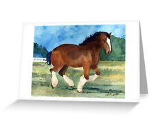 Clydesdale Horse Portrait Greeting Card
