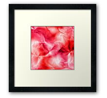 Light Rose Shadows Framed Print